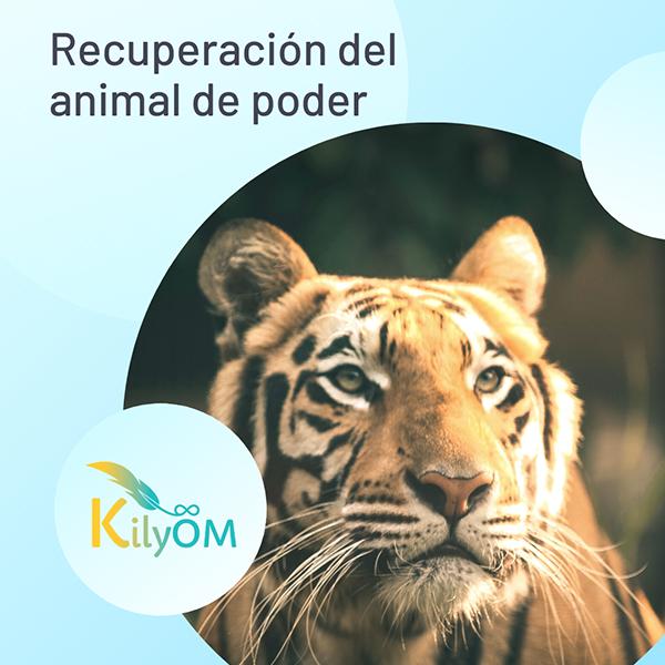 Recuperación del animal de poder - KilyOM
